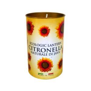 Citronella Fragrant Lantern