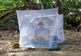 Box Mosquito Nets
