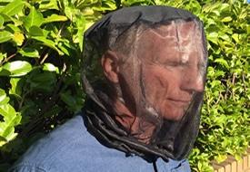 Head Nets