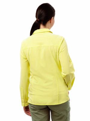 CWS412 Craghoppers NosiLife Pro Shirt - Citronella - Back