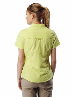 CWS435 Craghoppers NosiLife Adventure Shirt - Limeade - Back