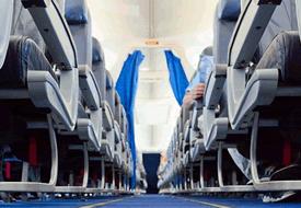 Flight Socks & Ear Plugs