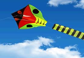 Pocket Kites & Boomerangs