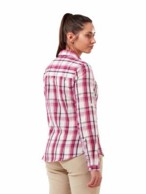 CWS511 Craghoppers NosiDefence Kiwi Shirt - Raspberry Check - Back